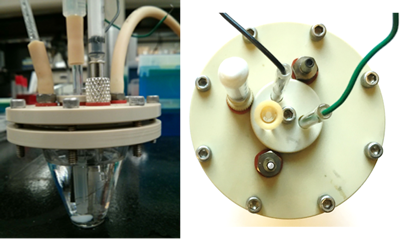 bioreactor_top_and_side